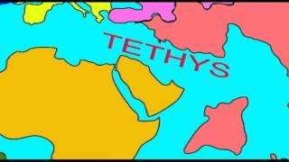 WHALE EVOLUTION: THE TETHYS SEAWAY.avi