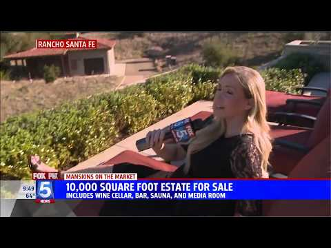 Fox 5 News Highlights 8092 Doug Hill in Mansions on the Market