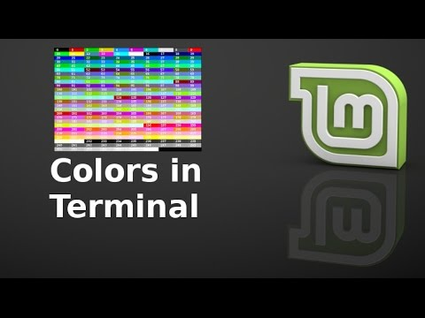 Meaning of different colors in command line terminal of Linux Mint (Ubuntu)