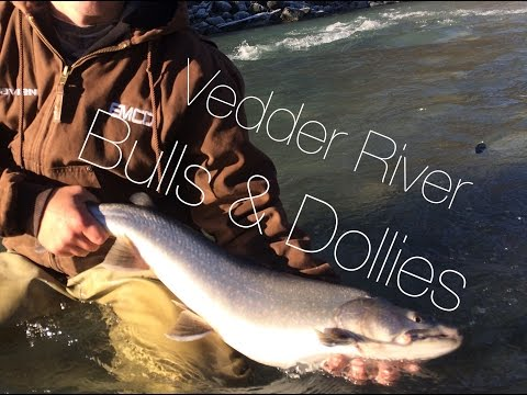 Float fishing for Bull Trout