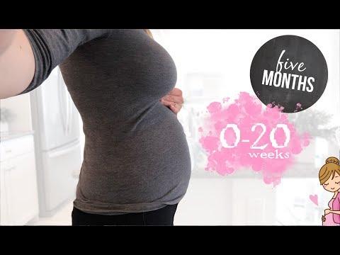 👶 PREGNANCY UPDATE week by week / 0-20 weeks pregnant 👶