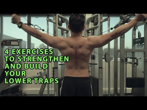 4 Exercises To Build and Strengthen Your Lower Traps