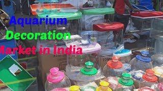 Fish Aquarium Home Delhi Aquarium Shop In Delhi Askme Com