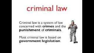 Video Vocab Law 1
