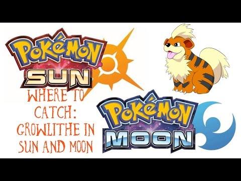 Where to Catch Growlithe!! Pokémon Sun + Moon!!!