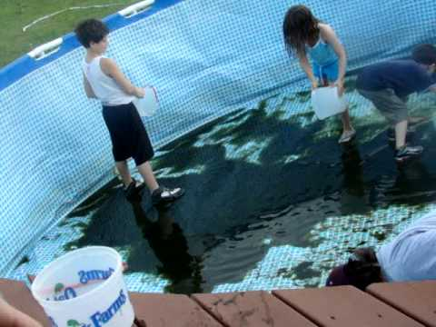 Kids and I cleaning the pool 2007