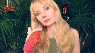 Trim and Prune Session 🌱 ASMR Plant