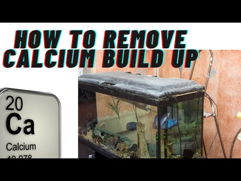How to remove calcium build-up or white build up
