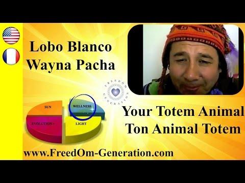 How to know your Totem Animal ? With Lobo Blanco Wayna Pacha (Shamanism)