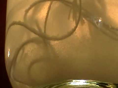 Nancy Today: Candle wick string in the brine ASMR