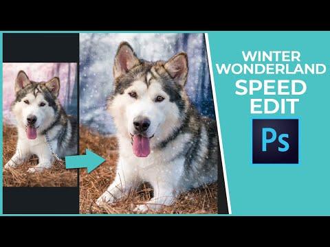 Mally Muster Winter Wonderland Creation - Editing Demo