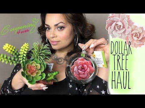 AMAZING NEW DOLLAR TREE HAUL | FEBRUARY