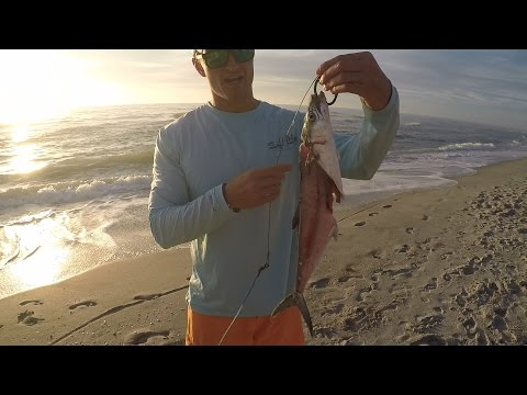 Extreme Bull Shark Fishing from the Beach