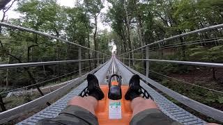 Georgia Mountain Coaster - Helen