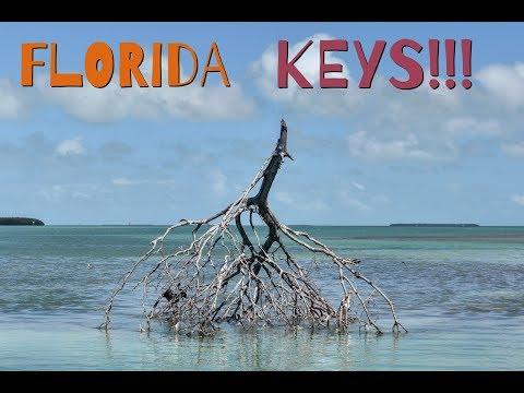 BOAT RIDE THROUGH MANGROVE TRESS IN FLORIDA KEYS!!!