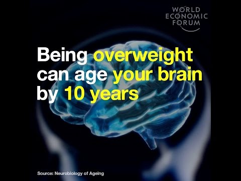 Being overweight can age your brain by 10 years