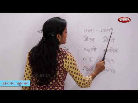 Singular and Plural Words in Hindi | एकवचन, बहुवचन | Change the Form of Hindi Words