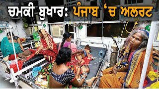 Chamki Fever | ਪੰਜਾਬ 'ਚ ਅਲਰਟ ਜਾਰੀ | TV Punjab