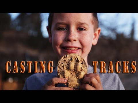 Casting Animal Tracks with Kids - family outdoor activities