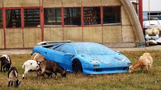 15 Expensive and Exclusive Abandoned Cars
