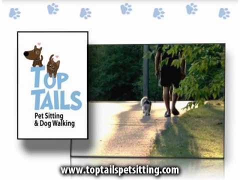 TOP TAILS Pet Sitting & Dog Walking Company