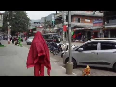 The Pink Yeti of Pokhara