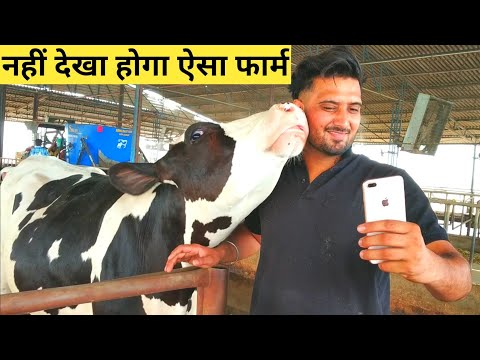 Inttelligent Modern Dairy Farm in INDIA Punjab|Most Advanced high Technology Agriculture MACHINERY
