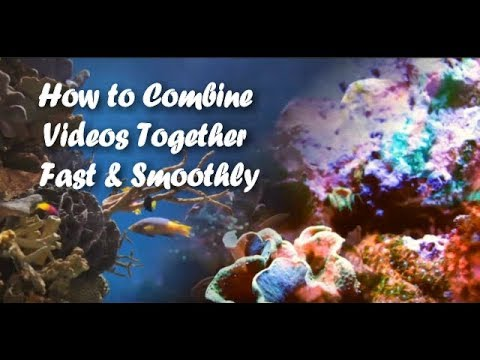 How to Combine Tons of Videos Together Fast & Smoothly