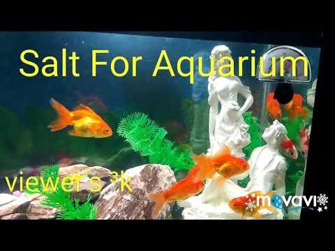 Home Made Aquarium Use Salt For Goldfish White spot's. 3k viewers
