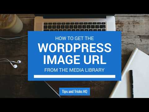 How to Get the Image URL from the Media Library