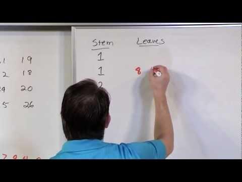 Stem and Leaf Plots in Statistics
