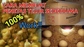 MEMBUAT ALAT TETAS TELUR SENDIRI SEDERHANA DARI KARDUS, Cepat & Mudah  how to make an egg hatcher