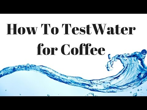 How to Test Water for Coffee with a TDS Meter