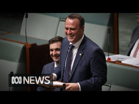MP proposes in Parliament after same-sex marriage bill introduced