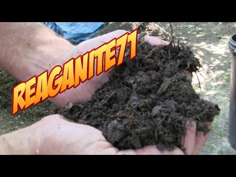 Grass to Garden Soil in 14 Days!  Drunken Composting Using Beer, Cola, & Ammonia!