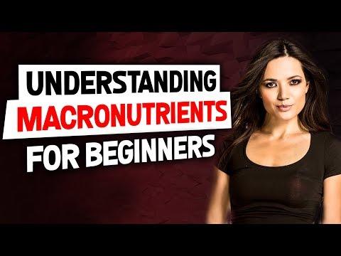 Understanding Macronutrients (Macros)  for Beginners | Gauge Girl Training
