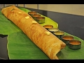 8 TYPES OF INDIAN BREAKFAST RECIPES  8 DOSAS | Street food Recipes- street food