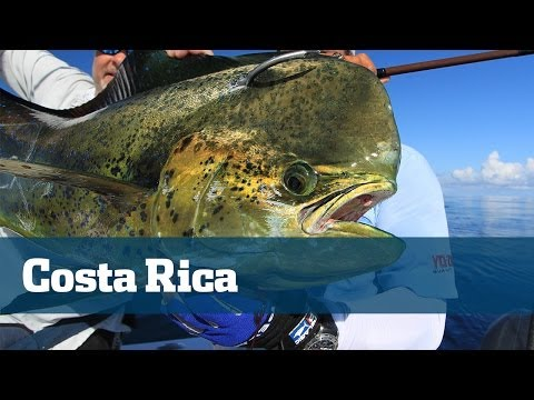 Fishing Costa Rica Marlin Dolphin Roosterfish Ecotours Mahi Zancudo Lodge - Florida Sport Fishing TV