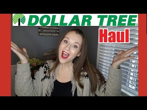 Dollar Tree haul with NEW ITEMS!!!!