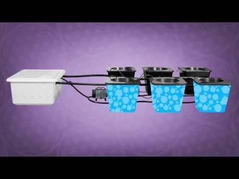 Hydroponic Bubble Buckets | Best Hydroponic Bucket System | Super Bubble Flow Buckets