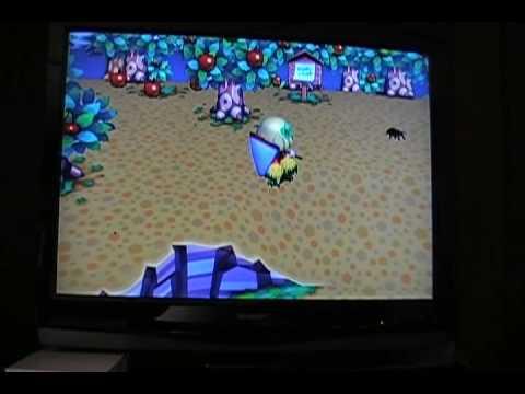 Animal Crossing City Folk How To Catch TARANTULA