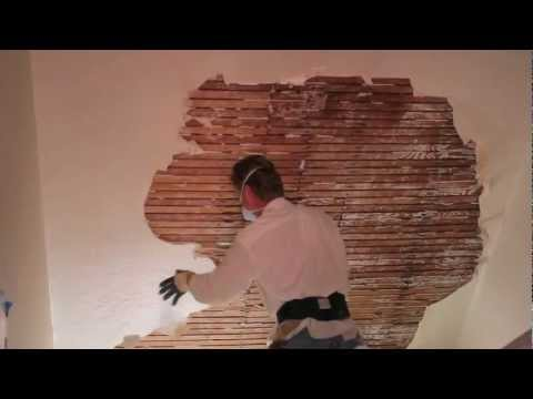 Remove and repair interior plaster on walls and ceilings