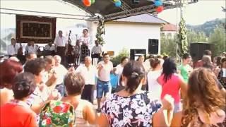 Download Niculina Stoican  Colaj LIVE Sarbatoarea Teiului 2013, Pausesti Maglasi, Valcea