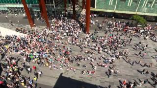 Waka Waka Biggest flashmob in the Netherlands
