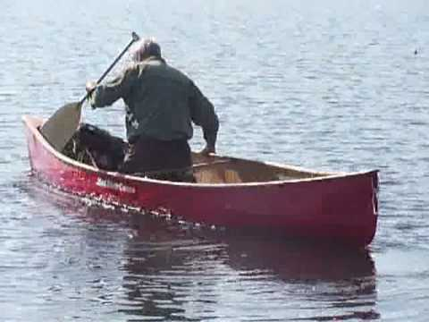 Don't Canoe with Dogs