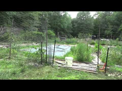 Rewiring The Chicken Electric Fence To Stop Raccoon Attacks