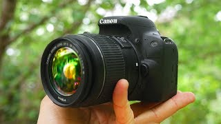 BEST Beginner DSLR Camera 2018!