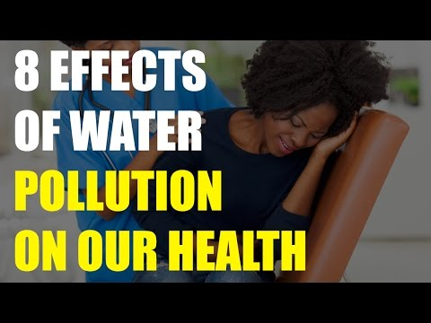 8 Effects of Water Pollution on Our Health