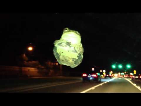 Frog on windshield