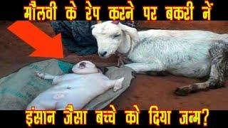 SHOCKING! मौलवी के Rape करने की वजह से बकरी ने इंसान जैसे बच्चों को दिया जन्म,जानकर उड़ जाएगें होश